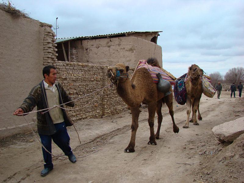 знакомство туркмении