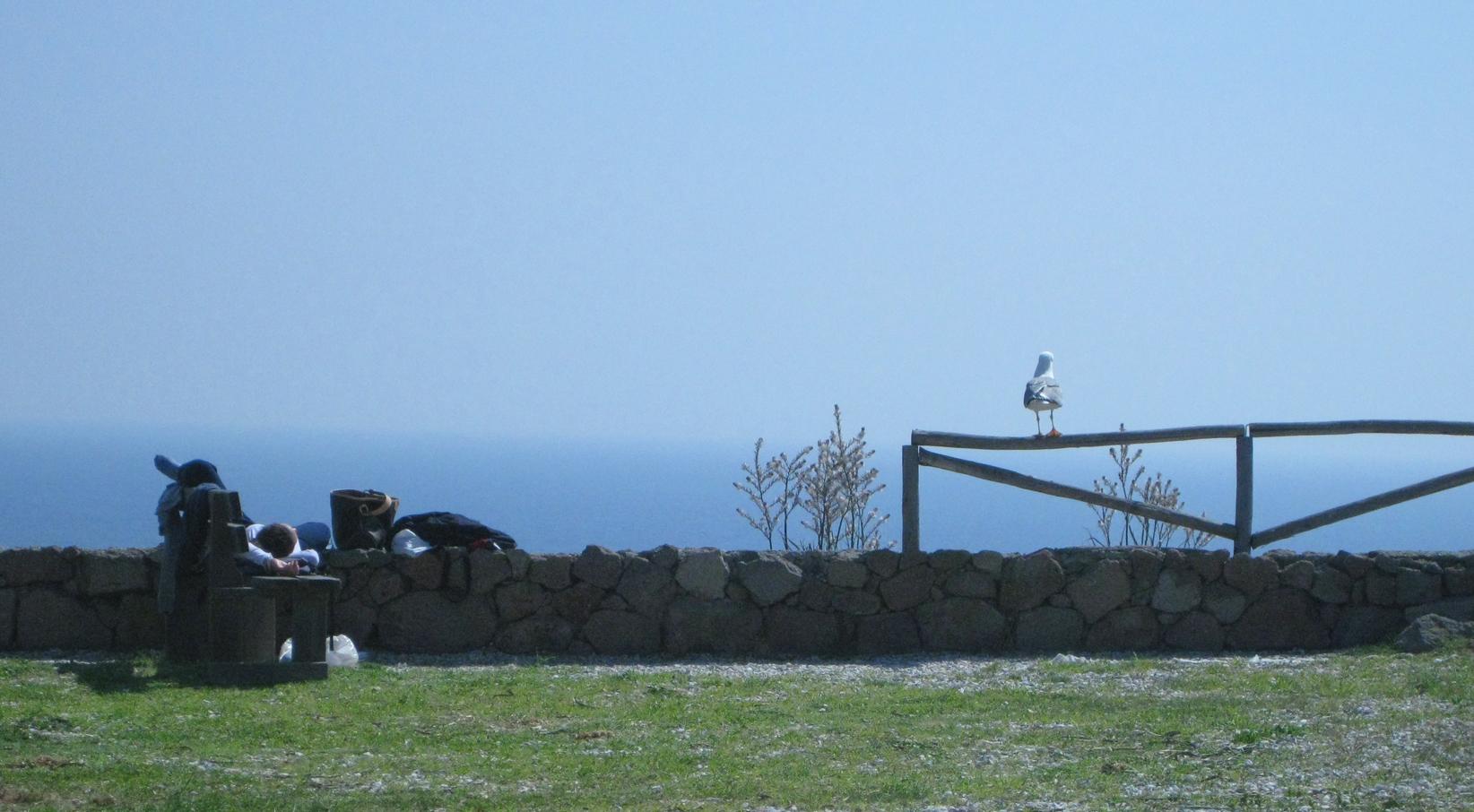 На острове Капрая. Послеобеденный отдых