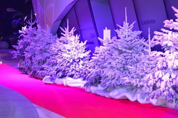 Рождество в княжестве Монако.